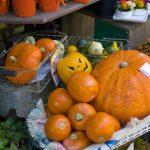 ハロウィンのレシピでかぼちゃを使うのなぜ?簡単にできる料理、レシピをご紹介~ハロウィンの逸話も♪