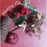 """1人も楽しい""""クリぼっち!NHKでニュースでふえてる一人のクリスマスについての話題でした。お一人さま何をしてすごす?クリスマスケーキを焼きます♪"""