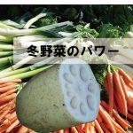 冬野菜の食べ方免疫効果など最新情報