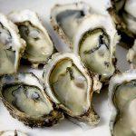 牡蠣を美味しく食べるには?NHKあさイチ、スゴ技Qで紹介された情報