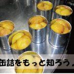 新生活に!時短料理に!ガッテン缶詰情報が役にたつ!