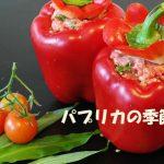 パプリカ料理、作り置き活用レシピなどをnhkあさイチから