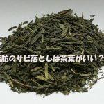 とても危険な「脂肪のサビ」を茶ノベーゼ、 茶ぶ茶ぶで落とす!(世界一受けたい授業)