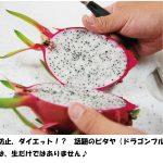 ピタヤが業界で注目!夏のスーパーフードイチ押し!ドラゴンフルーツの食べ方特集(あさイチ)