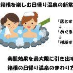 【ソレダメ】箱根日帰り温泉で肌を最大限に若返らせる一万円以下での温泉巡りメニュー